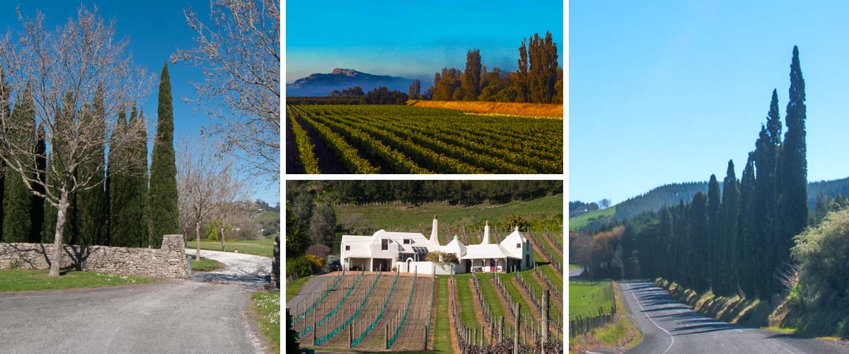 Weekend getaway by the coast in Hawkes Bay, stay in a boutique accommodation with an european styl design
