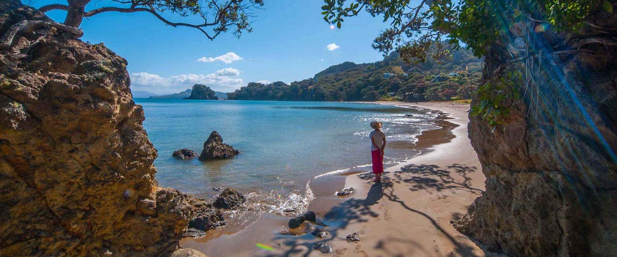 Coromandel beaches along the east coast with special boutique lodges along the way