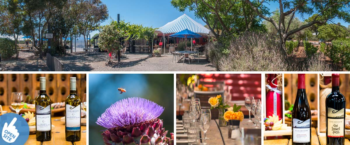 Clearview estate winery, casual restaurant, table setting with cheese platters, Clearview vineyard cottage accommodation