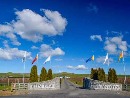 The oldest wine region of New Zeland, Hawkes Bay has over 70 wineries to offer. Sileni is one off them